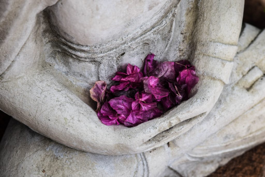 buddha statue with flower petals